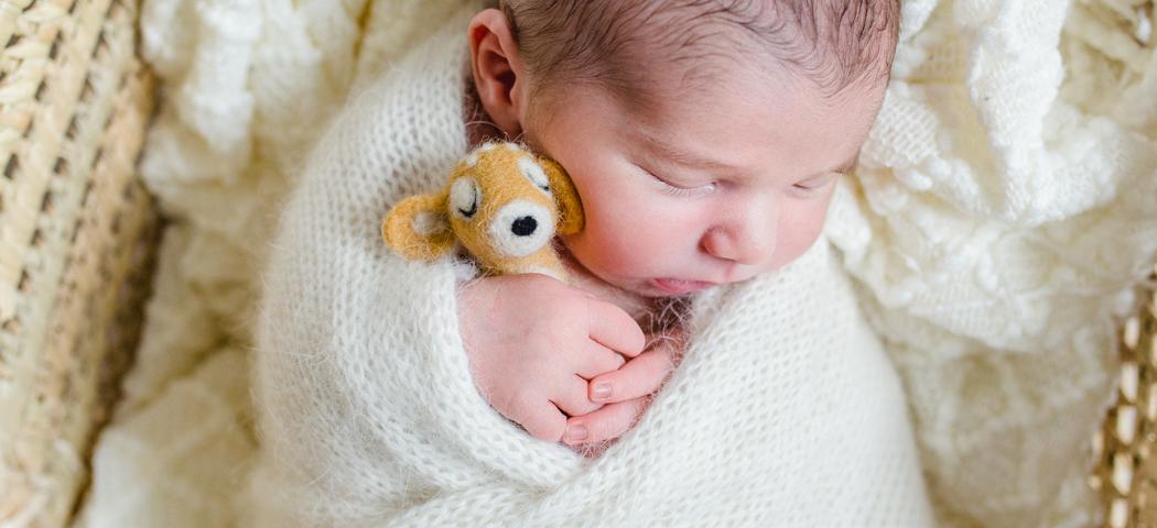 mareike wiesner photography neugeborenenshooting moseskorb 002 1050x480 - Neugeborenenshooting in Wolfsburg - Winterlich im Moseskorb